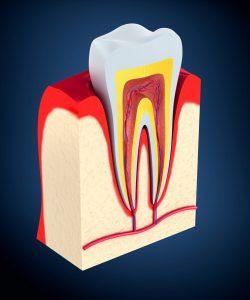 gum disease montclair plaza ca